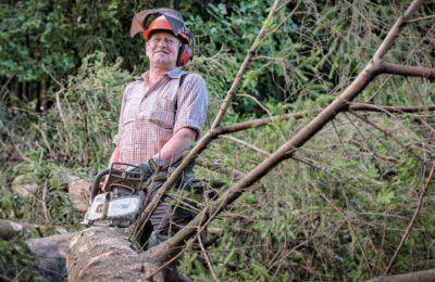 Genossenschaft aus Waldbesitzern und Pelletheizern